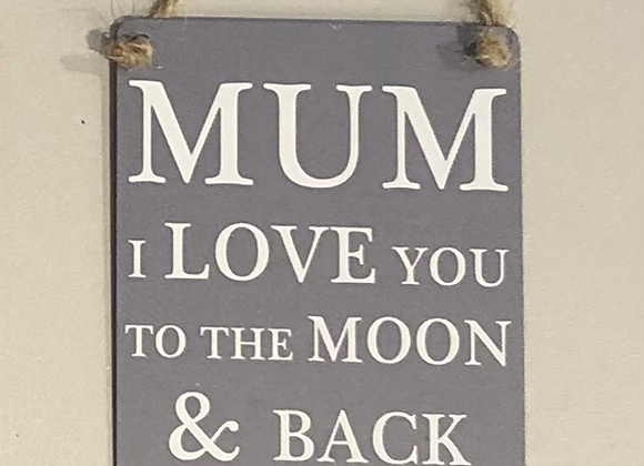 Small Novelty Metal Sign