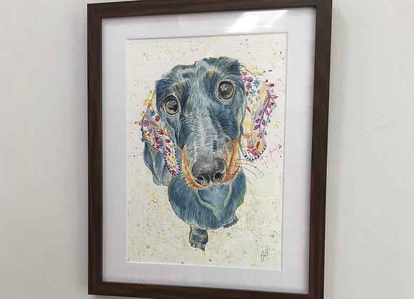 Moose the Dachshund Original Art Print