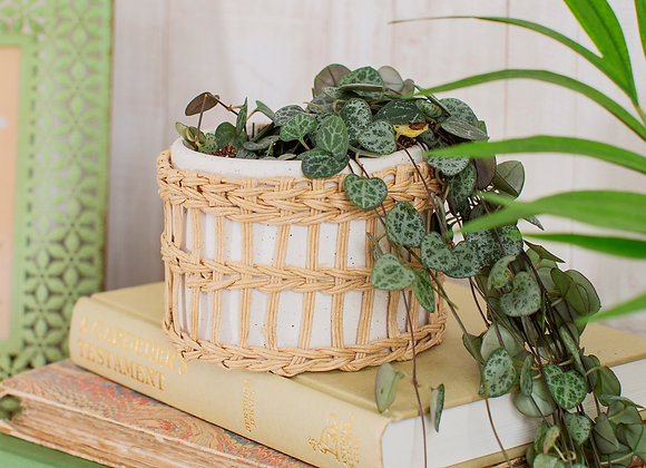 Speckled White and Woven Planter