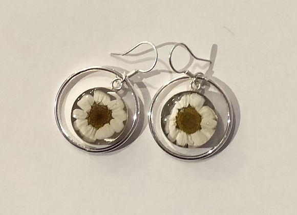 Daisy Earrings with Silver Surround