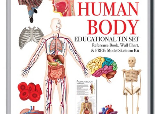 Educational Tins Human Body