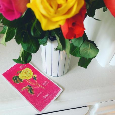 invitation-rose