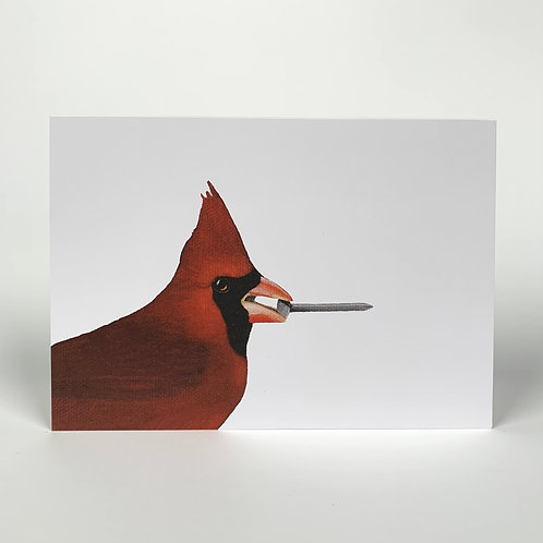 Cardinal With Nail Blank Note Card