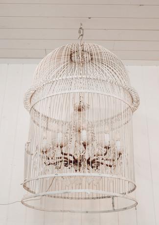 Bride's Room Bird Cage Chandelier
