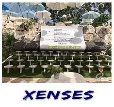 Xenses Polaroid.jpg