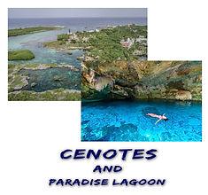 Cenotes & Paradise Polaroid.jpg