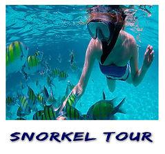 Snorkel Tour | Cancun Tours & Adventures