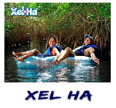 Xel Ha Polaroid.jpg