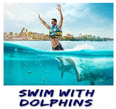 Swin with Dolphins | Cancun Tours & Adve