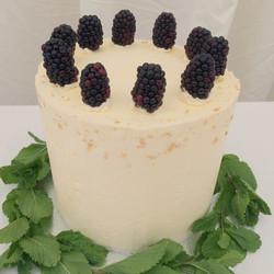 Vanilla and forest fruit celebration cake