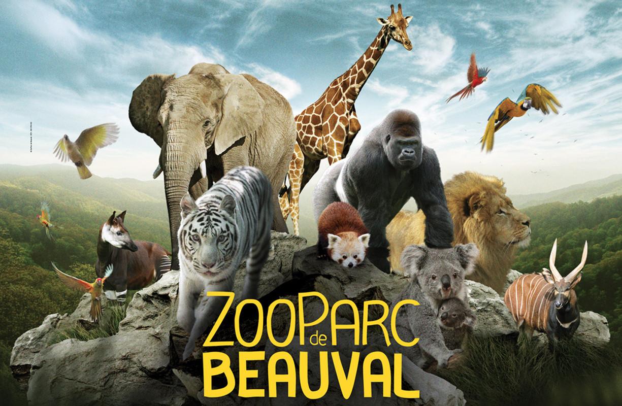 zoo-beauval.jpg