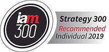 IAM Strategy 300 recommended individual
