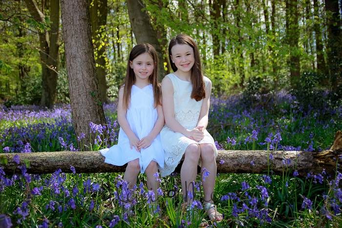 Bluebells Mini Session Portsmouth