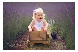 Lordington Lavender Photoshoot