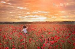 Outdoor Photographer Hampshire