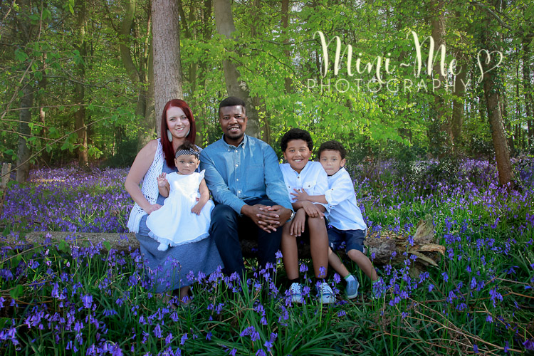 family photographer hampshire