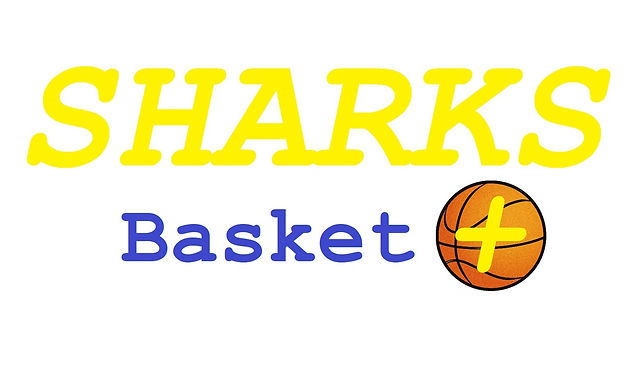 Logo Sharks Basket +.jpg