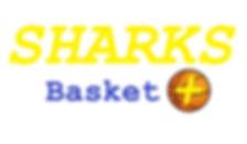 Logo Sharks Basket +.jpg