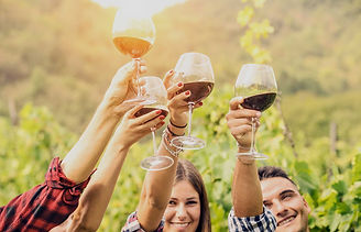 Friends toasting in a vineyard