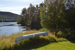 32 Canoe in the garden