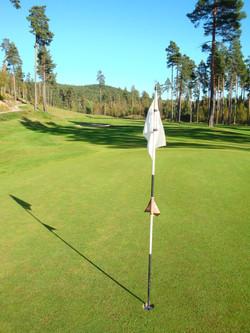 29 Golf course next door