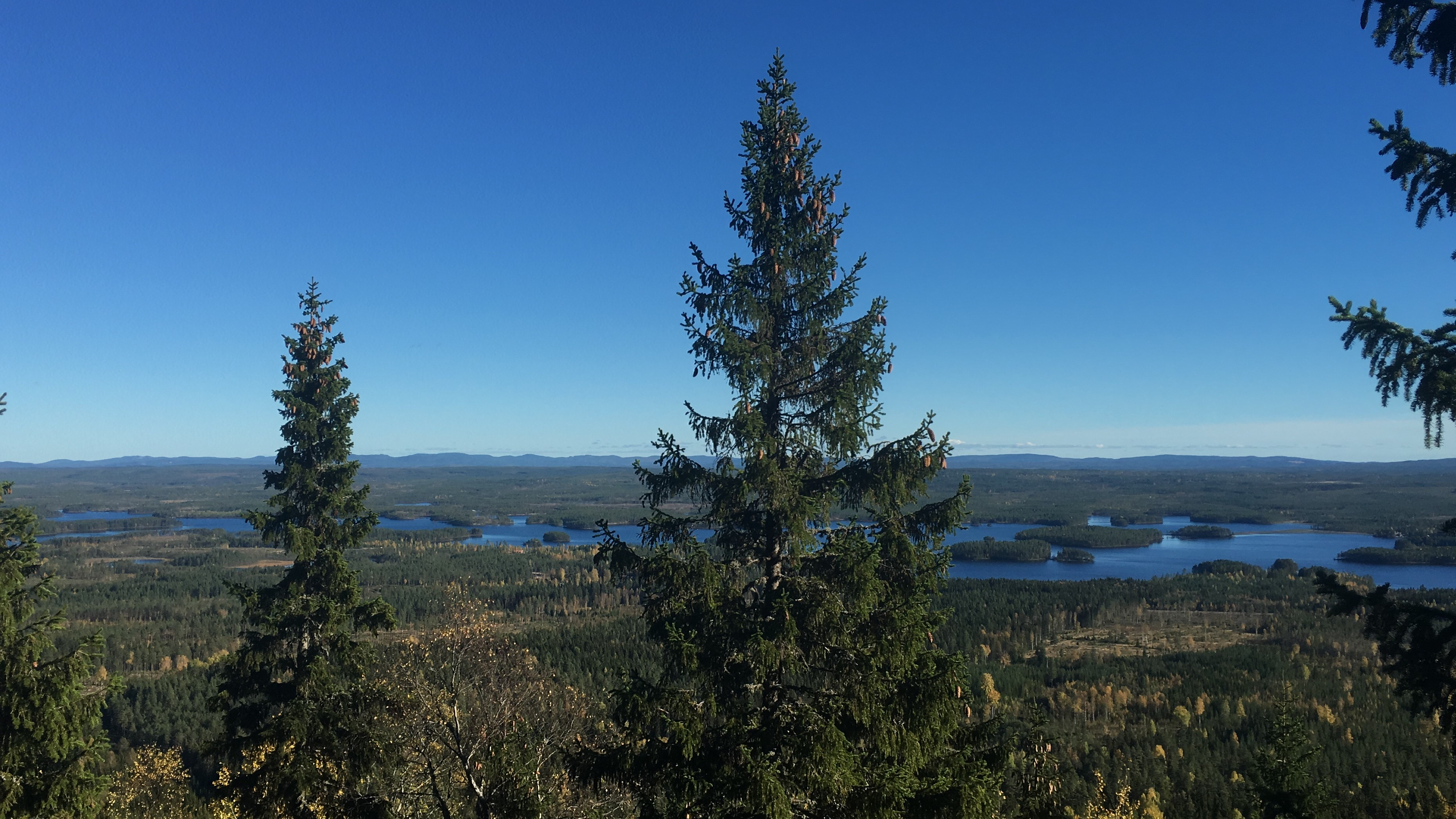 34_View_over_Öje_lake_nearby