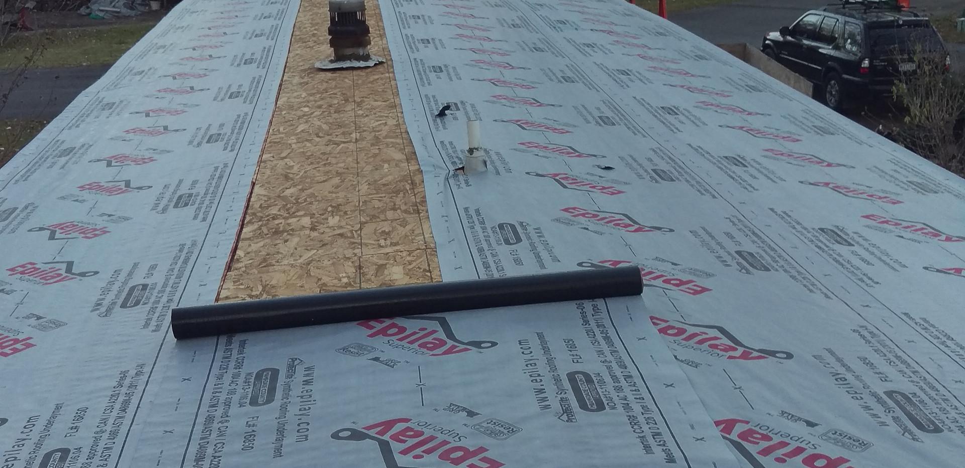 New metal roof (6).jpg