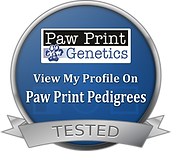pawprinttested.png