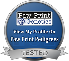 Paw Print Genetics Pedigrees