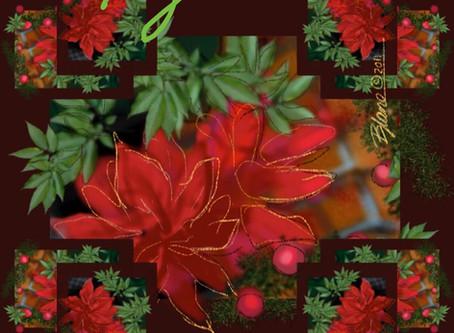 #dailygratitude - Happy Holidays