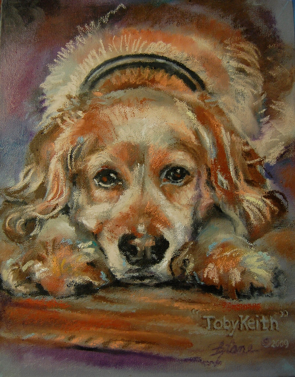 Portrait of a Cocker Spaniel - oil on canvas
