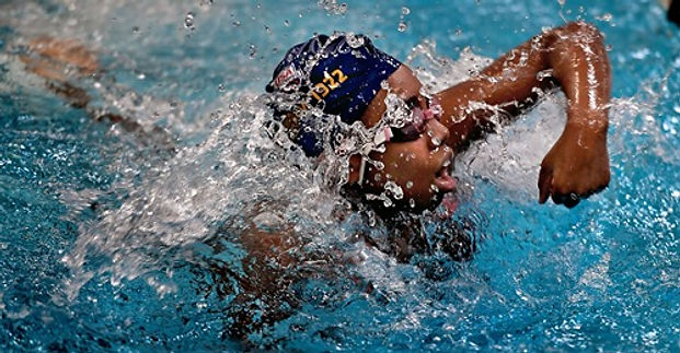 swim like a fish.jpg