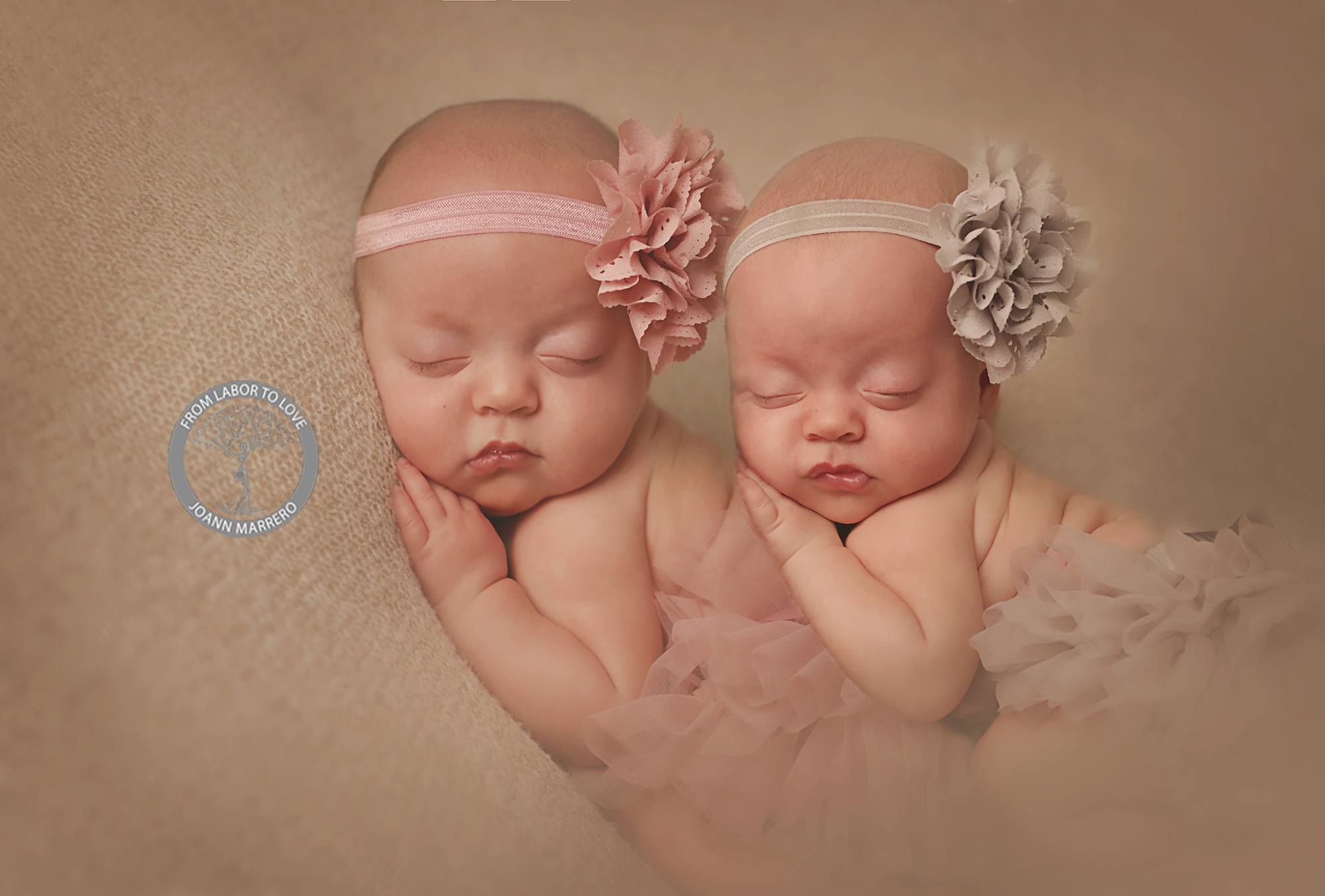 CT Birth  & Newborn Photographer