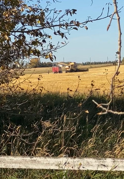 Tabler Family Farming