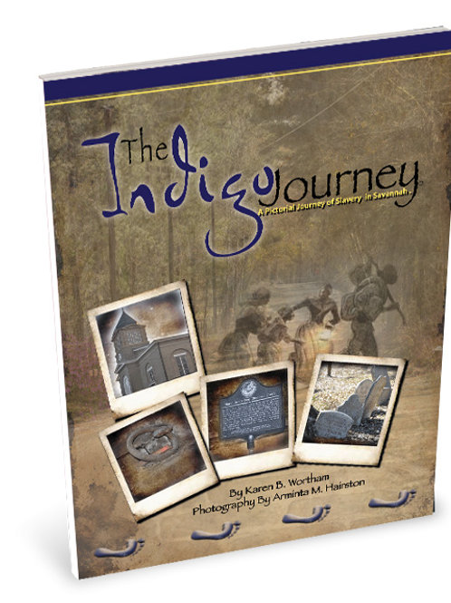 The Indigo Journey book