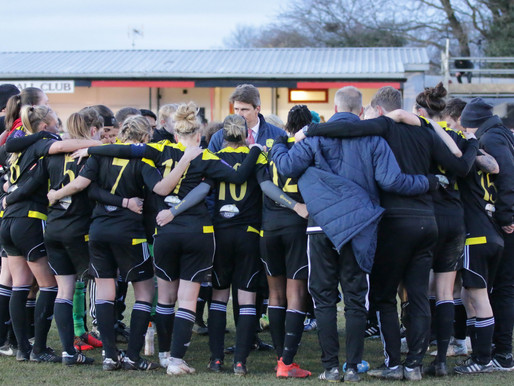 We need a firm plan to protect women's football, says the WSA