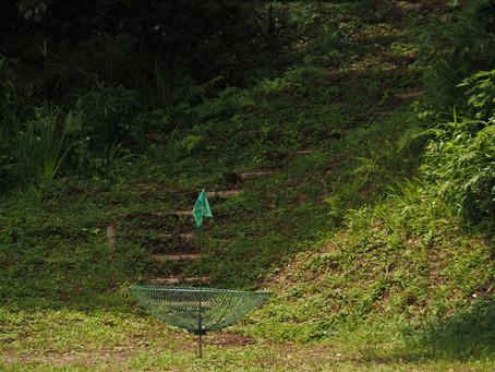 バードゴルフに挑戦してみよう