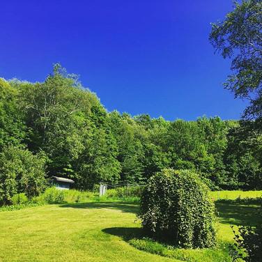 Berkshire Summer