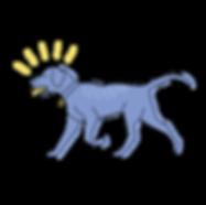 DogWalks1.png