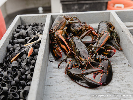 Everything You Always Wanted to Know About Lobsters* (*But Were Afraid to Ask)