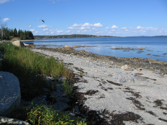 view of private beach looking north
