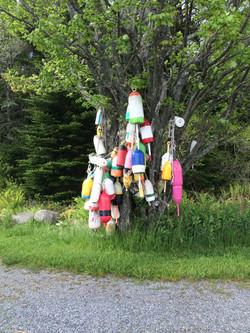 lobster buoy tree, WoodenBoat School