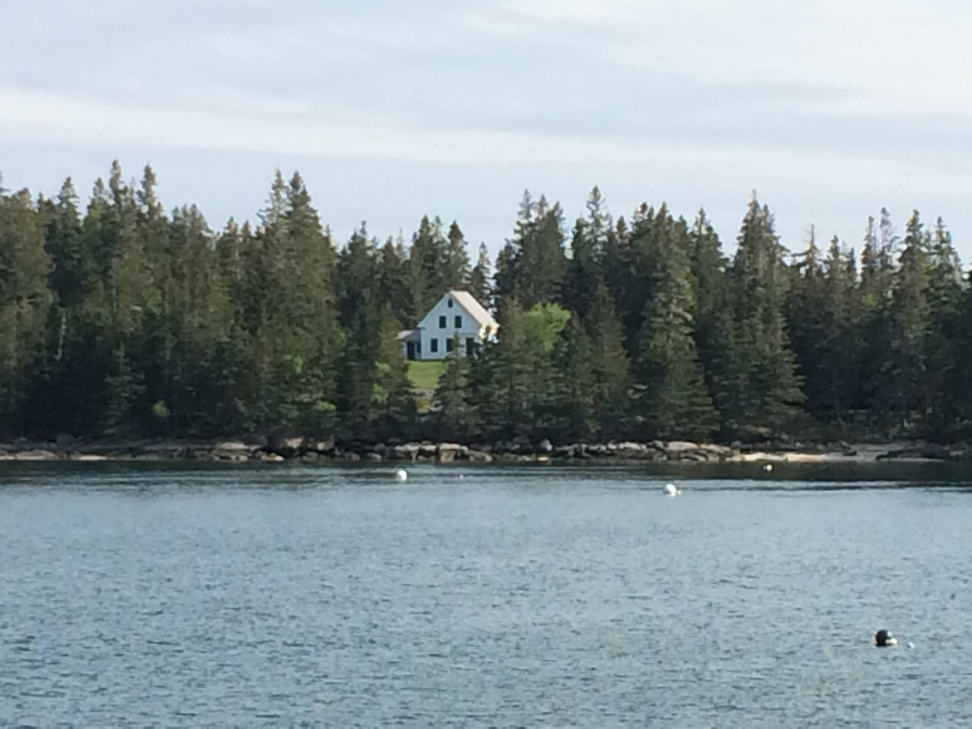 Harbor Island, Naskeag Pt., Brooklin
