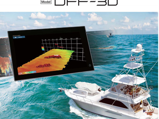 Network Multi Beam Sonar DFF 3D