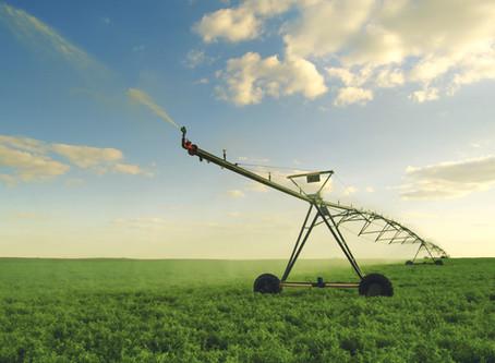 ¿Agricultura rural o agricultura urbana?. ¡¿Qué más da?!...AGRICULTURA, SIN MÁS.
