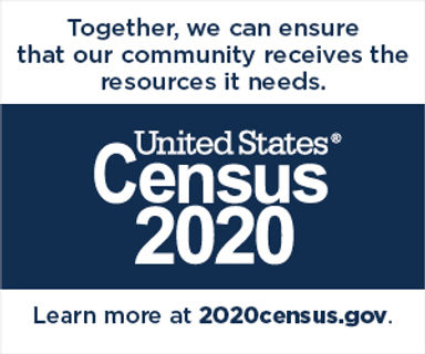 Census Partnership Web Badges.jpg