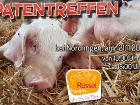 Unsere Schweine freuen sich auf Euren Besuch ❤️