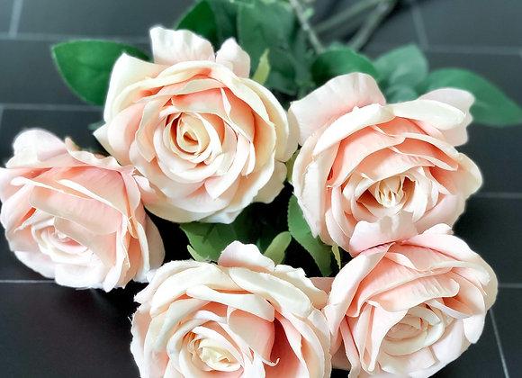Belle Époque - Set of 6 Roses