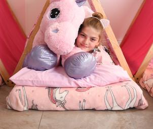 Unicorn Sleepover Tent Theme