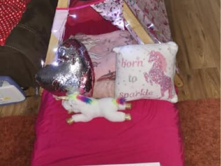 Unicorn and army sleepover party Tents In Essex